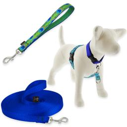 Training Products for Dogs category image