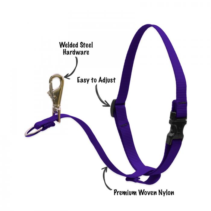 Basic Solids No Pull Training Harness